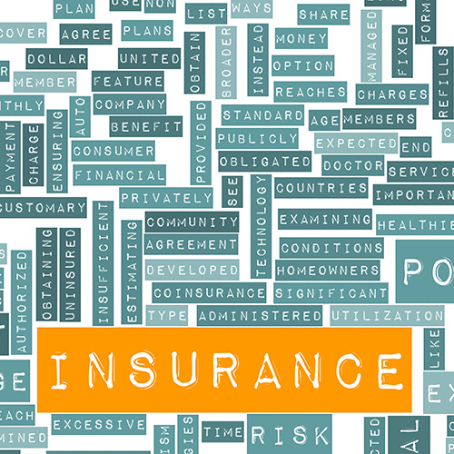 Insurance Policy Dividends